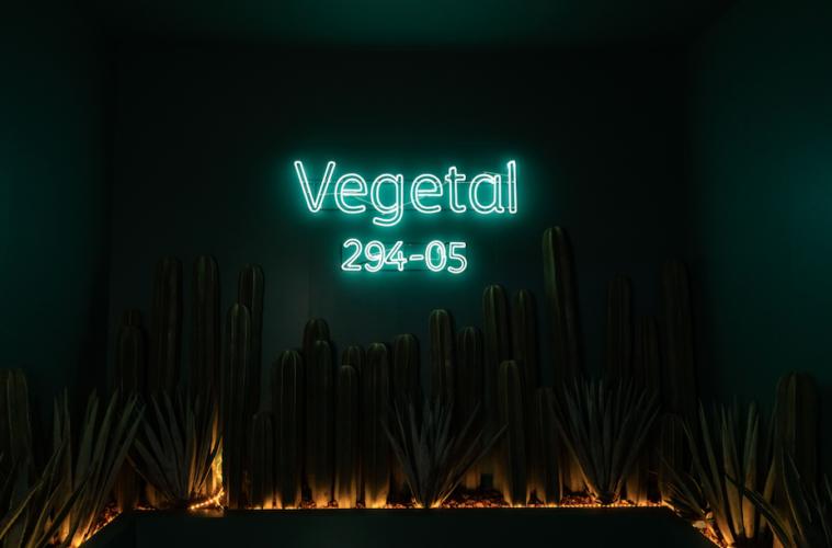 Color Vegetal